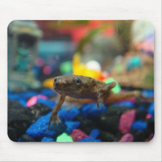 African Dwarf Frog Mouse Mat