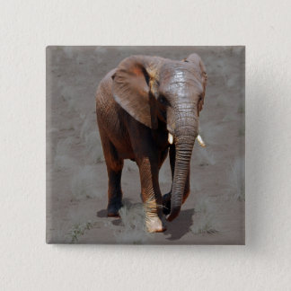 African elephant 15 cm square badge