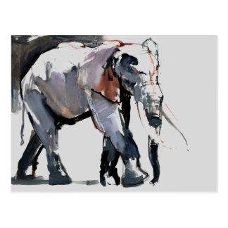 African Elephant 2012 Postcard