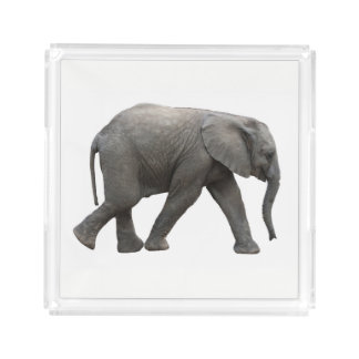 African Elephant Acrylic Tray