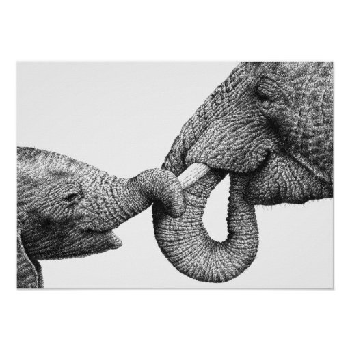 African Elephant and Calf Poster