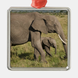 African Elephant and cub (Loxodonta africana), Silver-Colored Square Decoration