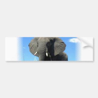 African Elephant Bumper Sticker Car Bumper Sticker