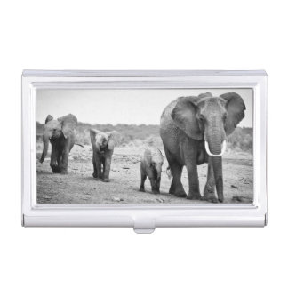 African Elephant & Calves | Kenya, Africa Business Card Holder