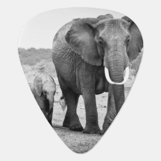 African Elephant & Calves   Kenya, Africa Guitar Pick