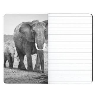 African Elephant & Calves | Kenya, Africa Journal
