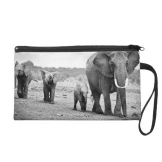 African Elephant & Calves | Kenya, Africa Wristlet
