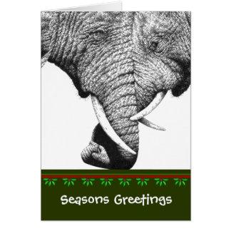 African Elephant Christmas Card