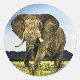 african-elephant classic round sticker