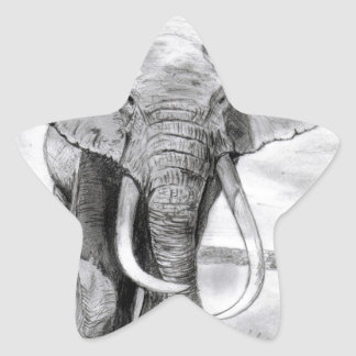 african elephant drawing in pencil design star sticker