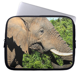 African Elephant eating Computer Sleeve