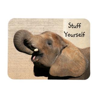 African elephant eats rectangular photo magnet