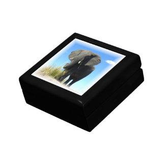 African Elephant Gift Box