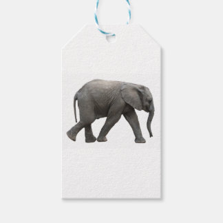 African Elephant Gift Tags