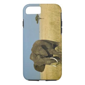 African Elephant grazing in tall summer grass, iPhone 8/7 Case