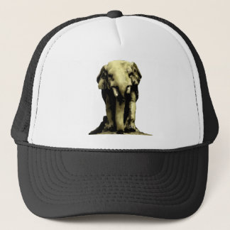 African Elephant hat