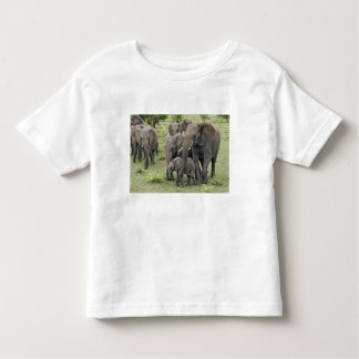 African Elephant herd, Loxodonta africana, 2 Toddler T-Shirt