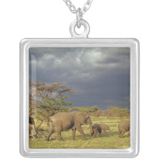 African Elephant herd, Loxodonta africana, Silver Plated Necklace