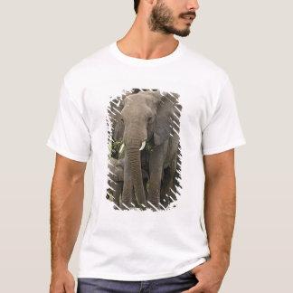 African Elephant herd, Loxodonta africana, T-Shirt