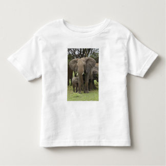 African Elephant herd, Loxodonta africana, Toddler T-Shirt