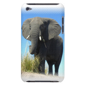 African Elephant iTouch Case