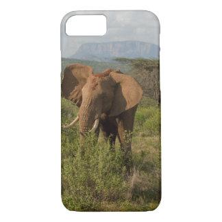 African Elephant, Loxodonta africana, in Samburu iPhone 8/7 Case