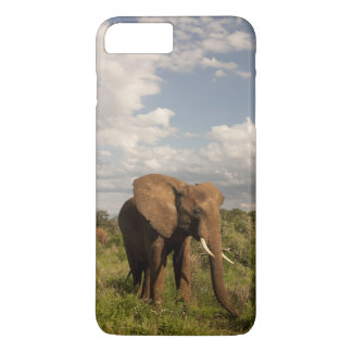 African Elephant, Loxodonta africana, out in a iPhone 8 Plus/7 Plus Case