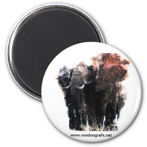 African Elephant Refrigerator Magnets
