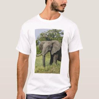 African Elephant, Masai Mara, Kenya. Loxodonta T-Shirt