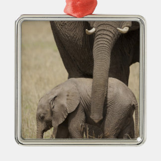 African Elephant mother with baby walking 2 Silver-Colored Square Decoration