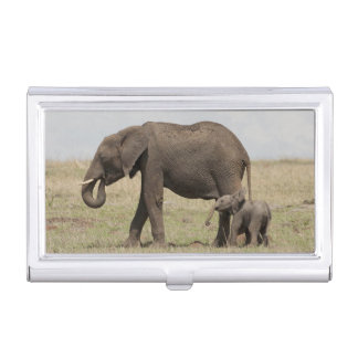 African Elephant mother with baby walking Business Card Holder