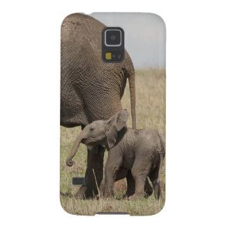 African Elephant mother with baby walking Case For Galaxy S5