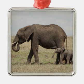 African Elephant mother with baby walking Silver-Colored Square Decoration