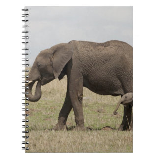 African Elephant mother with baby walking Spiral Notebook