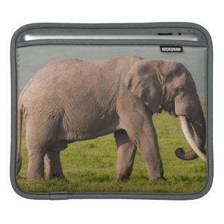 African Elephant, Ngorongoro Conservation Area iPad Sleeve