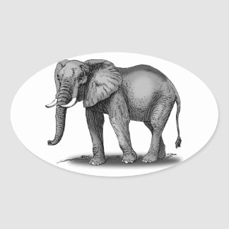 African Elephant Oval Sticker