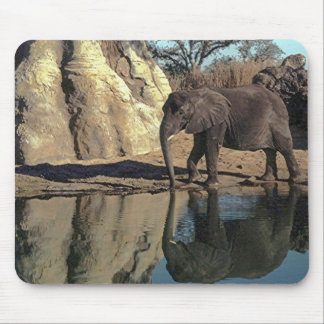 african elephant reflections mouse mat