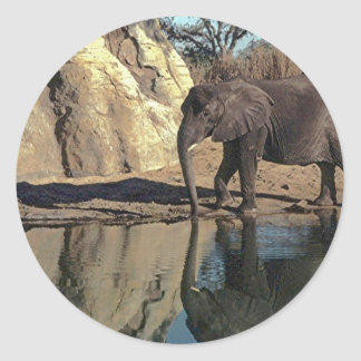 african elephant reflections round stickers