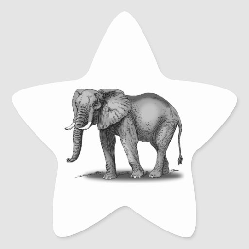 African Elephant Star Stickers