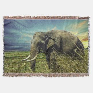 African  Elephant Throw