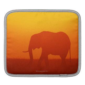 African elephant walking at sunset , Kenya iPad Sleeve