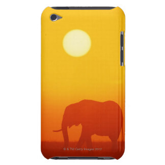 African elephant walking at sunset , Kenya , iPod Case-Mate Cases