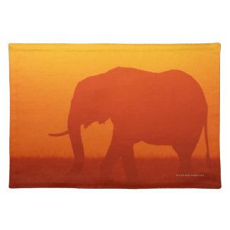 African elephant walking at sunset , Kenya Placemat