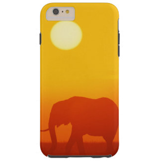 African elephant walking at sunset , Kenya , Tough iPhone 6 Plus Case