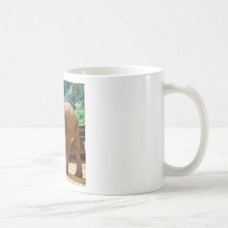 African elephant walking basic white mug