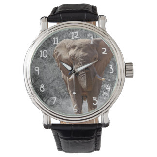 African Elephant Watch