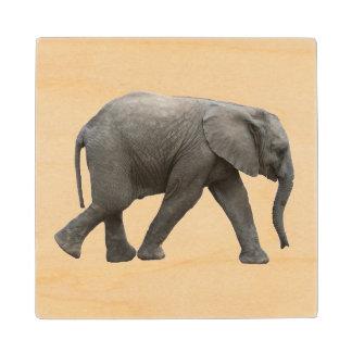 African elephant wood coaster