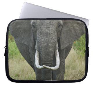 African Elephantna loxodonta, Masai Mara Game Laptop Sleeve