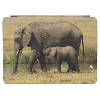 African Elephants at water pool iPad Air Cover