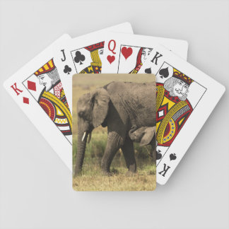 African Elephants at water pool Playing Cards